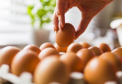 Jak sprawdzić czy jajko jest świeże?