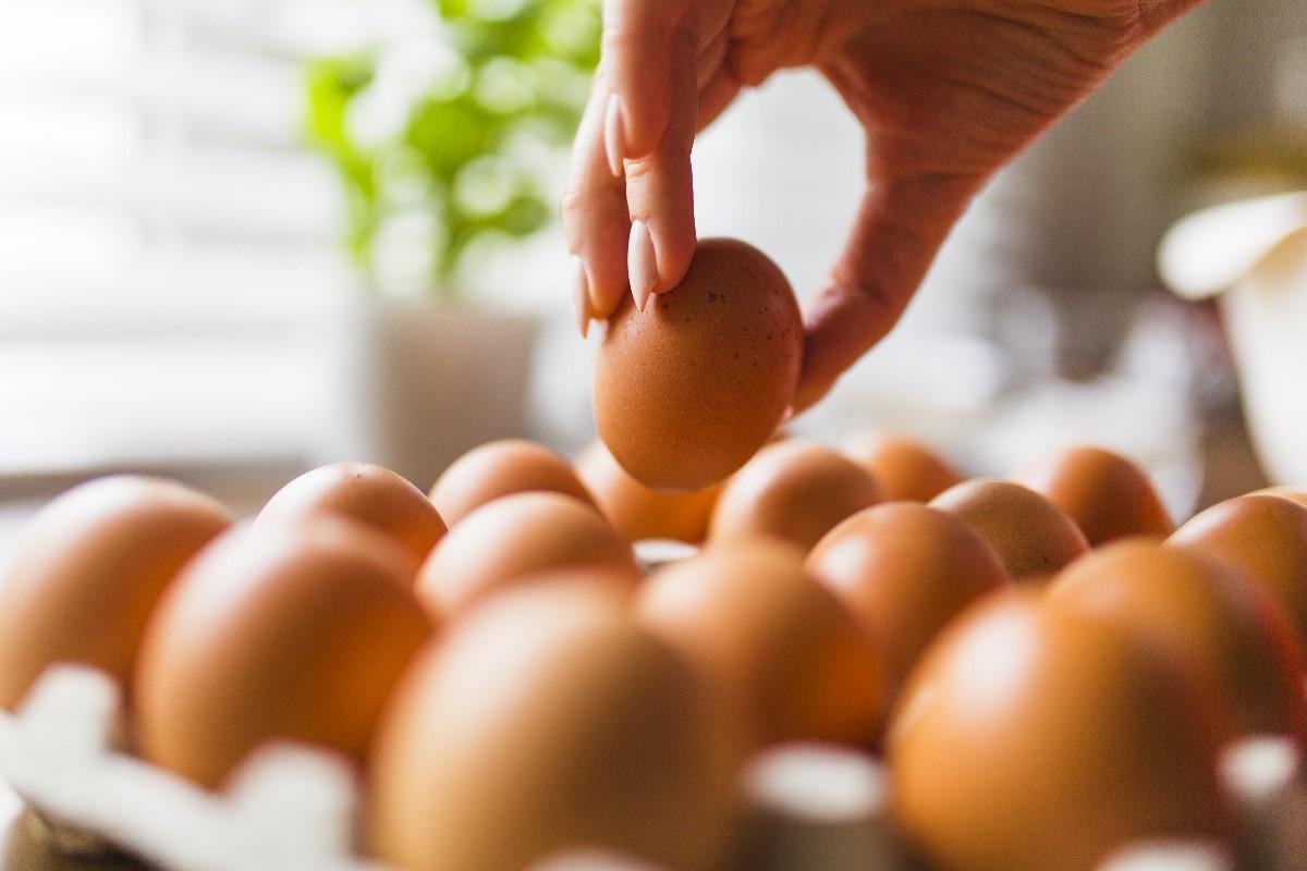 jak-sprawdzic-czy-jajko-jest-swieze