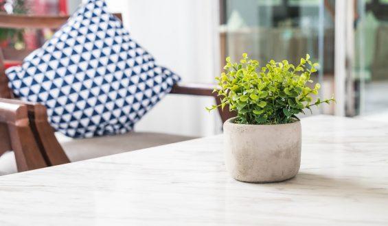 Jak dbać o sztuczne rośliny w mieszkaniu?